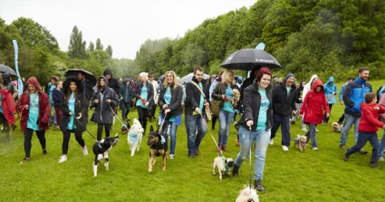 500 Dogs Take Part In RSPCA's Biggest Ever Dog Walk