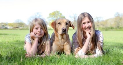 RSPCA Urges Parents To Educate Children On How To Behave Around Dogs